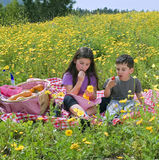 男孩女孩野餐 图库摄影