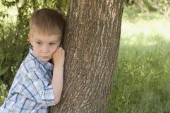 男孩容忍少许结构树 库存照片