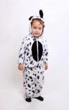 男孩小服装的dalmatine 免版税库存图片