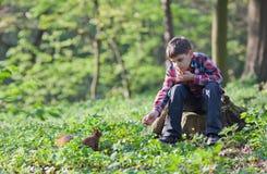 男孩小的灰鼠 图库摄影
