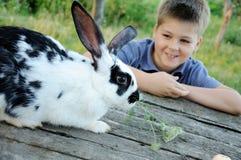 男孩庭院兔子 免版税库存照片