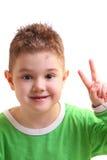 男孩快乐的小的纵向 免版税库存照片