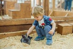 男孩戏剧用兔子 免版税图库摄影
