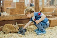 男孩戏剧用兔子 免版税库存照片