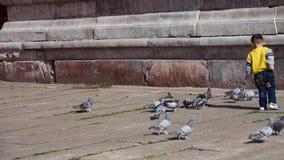 男孩抓住鸽子&在紫禁城红色墙壁跌倒 股票视频