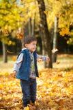 年轻男孩投掷的叶子在秋天公园 免版税图库摄影