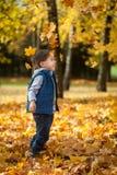 年轻男孩投掷的叶子在秋天公园 免版税库存图片