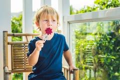 男孩拿着从龙果子的圆滑的人与一片薄荷的叶子和一根吸管 免版税图库摄影