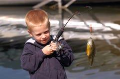 男孩捕鱼 免版税图库摄影