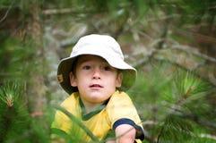 男孩探险家 免版税图库摄影