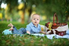 男孩有一顿野餐 图库摄影