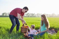 男孩正餐草食用少许草甸中午野餐薄饼二 免版税库存照片