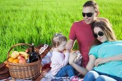 男孩正餐草食用少许草甸中午野餐薄饼二 免版税库存图片