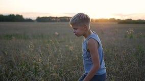 男孩沿麦田,日落的时期跑 户外运动 股票视频
