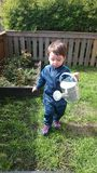 男孩浇灌的花 免版税库存照片