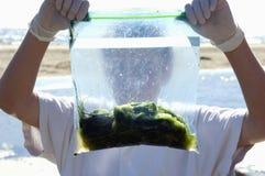 男孩海洋项目s科学年轻人 库存图片