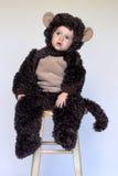 男孩猴子 库存图片