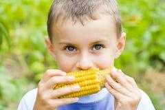 男孩玉米吃 免版税库存照片