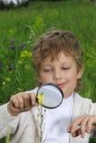 男孩玻璃扩大化 免版税库存图片