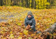 男孩的秋天画象 库存照片