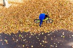 男孩的顶上的照片在秋天公园骑一辆自行车 免版税库存图片