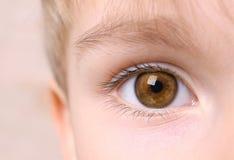 男孩眼睛特写镜头  免版税库存图片