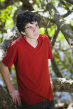 男孩纵向青少年的森林 免版税库存图片