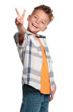 男孩纵向  免版税库存图片