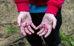 年轻男孩肮脏从黑莓汁手 库存图片