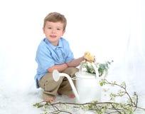 男孩能小鸡水 库存图片