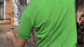 男孩裁减烘干了在灌木的分支与pruner 股票录像