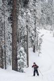 男孩越野滑雪 免版税库存图片