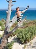 男孩跳出的结构树假期 免版税库存图片