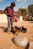 男孩逗人喜爱的印第安小狗 免版税库存照片