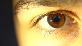 男孩,人,黑眼眉的一只美丽的棕色眼睛 库存照片