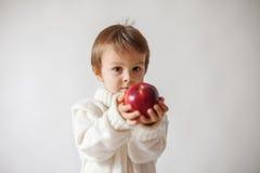 年轻男孩,拿着苹果 库存图片