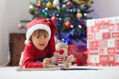 男孩,读在圣诞树前面的一本书 库存照片