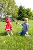 男孩给一朵花女孩 户外孩子戏剧 免版税库存照片