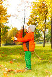 男孩从叶子清洗犁耙在美丽的秋天公园 免版税库存图片