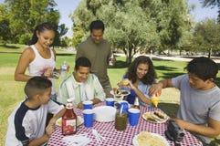 男孩(13-15)有在野餐的家庭的。 免版税库存照片