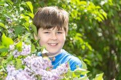 男孩画象在有开花的丁香的公园 库存图片