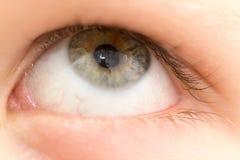男孩` s眼睛 图库摄影