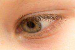 男孩` s眼睛 库存图片