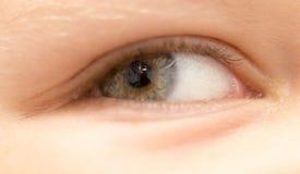 男孩` s眼睛 免版税库存图片