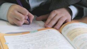 男小学生在习字簿写文本户内 股票视频
