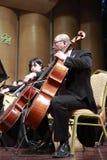 男性中提琴音乐家 免版税库存照片