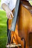 男性低音提琴球员 图库摄影
