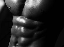 男性体育腹部特写镜头  库存图片