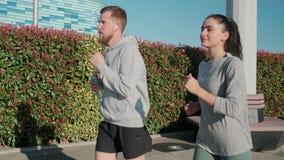 男性和女性体育人民做着在城市庭院里跑的早晨 股票视频