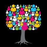 男性和女性消息结构树 免版税库存图片
